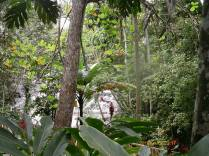Dunns River4