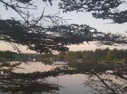 Sellars Cove1